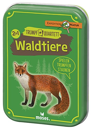 Expedition Natur Waldtiere