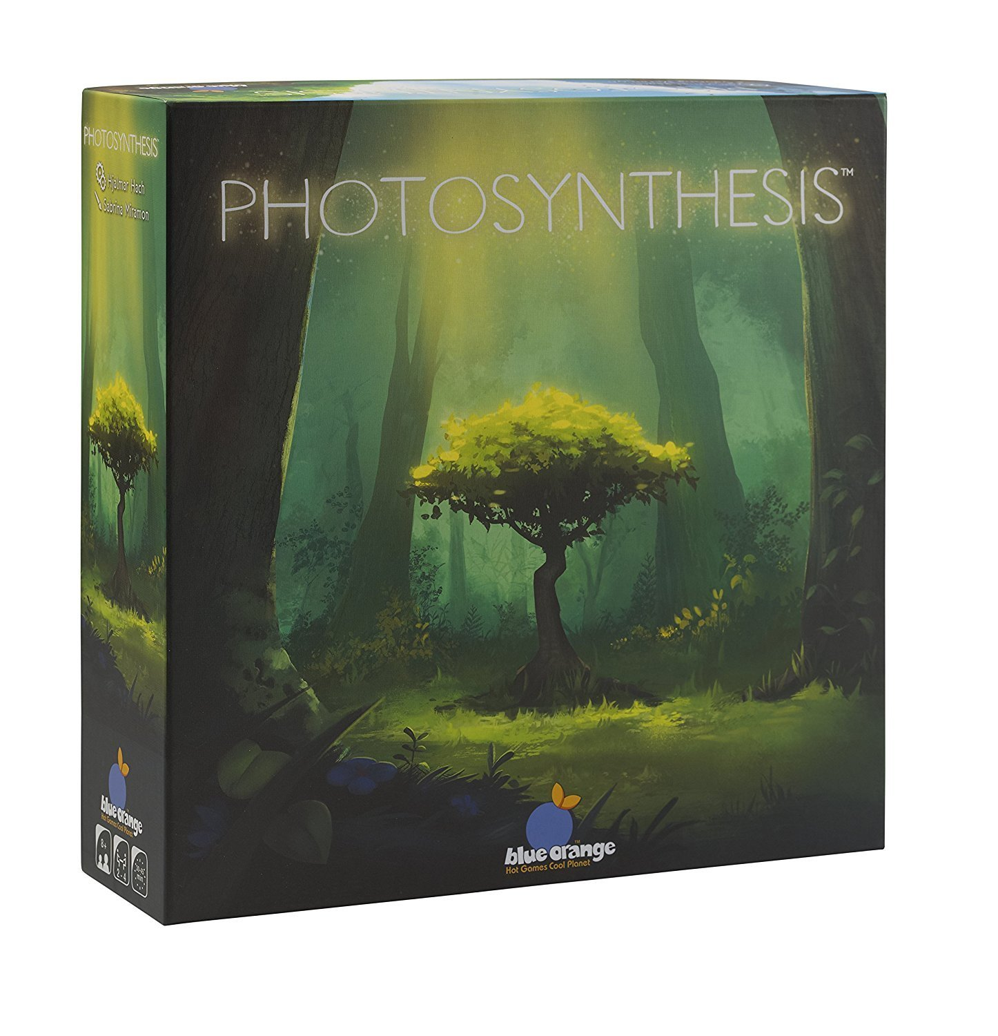 """Photosynthesis"""