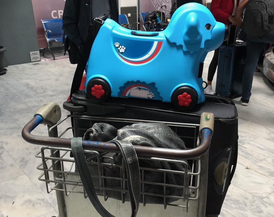 BIG_Trolley_Hund2